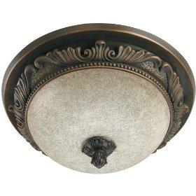 Hunter 83003 Aventine Bathroom Fan with Light and Nightlight, Aged Bronze: Home Improvement